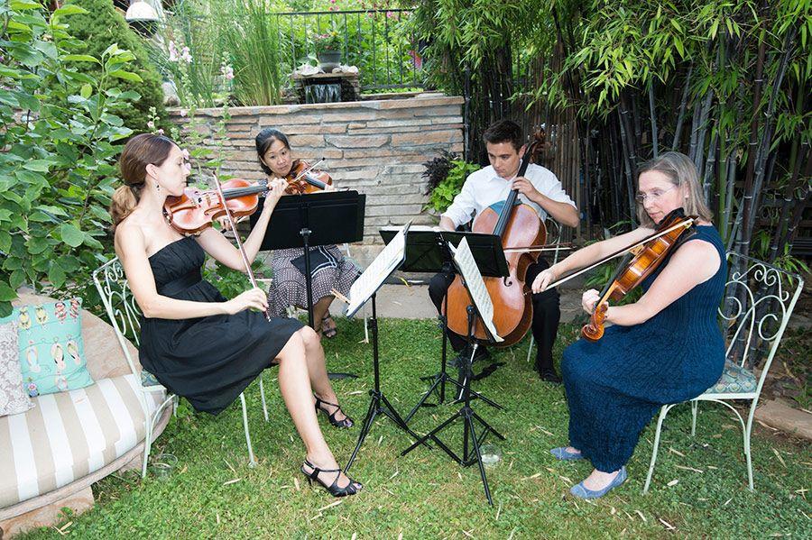 Music Quartet at Intimate Wedding Gathering
